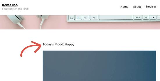 Muokatut kenttätiedot näkyvät WordPress-teemassa
