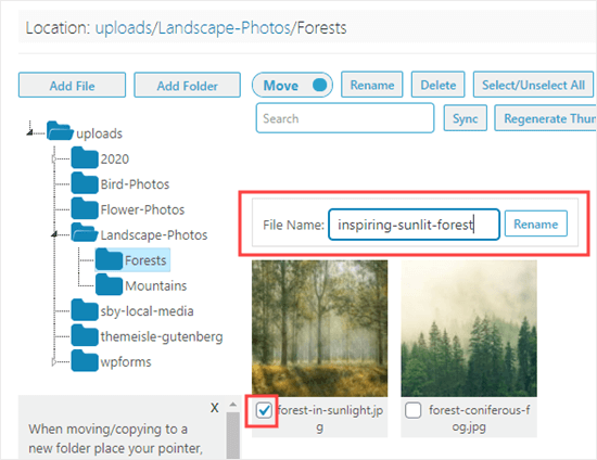 Changing the file name of an image using the Media Library Folders plugin