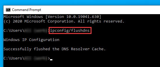 Typing the command into the Command Prompt window to flush the DNS cache