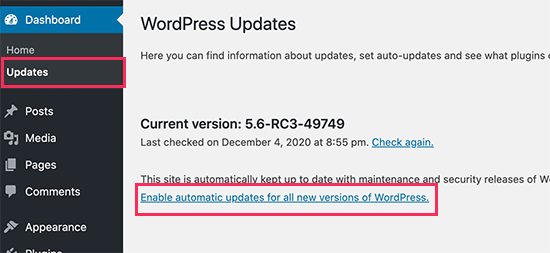 Enable automatic updates for major WordPress releases